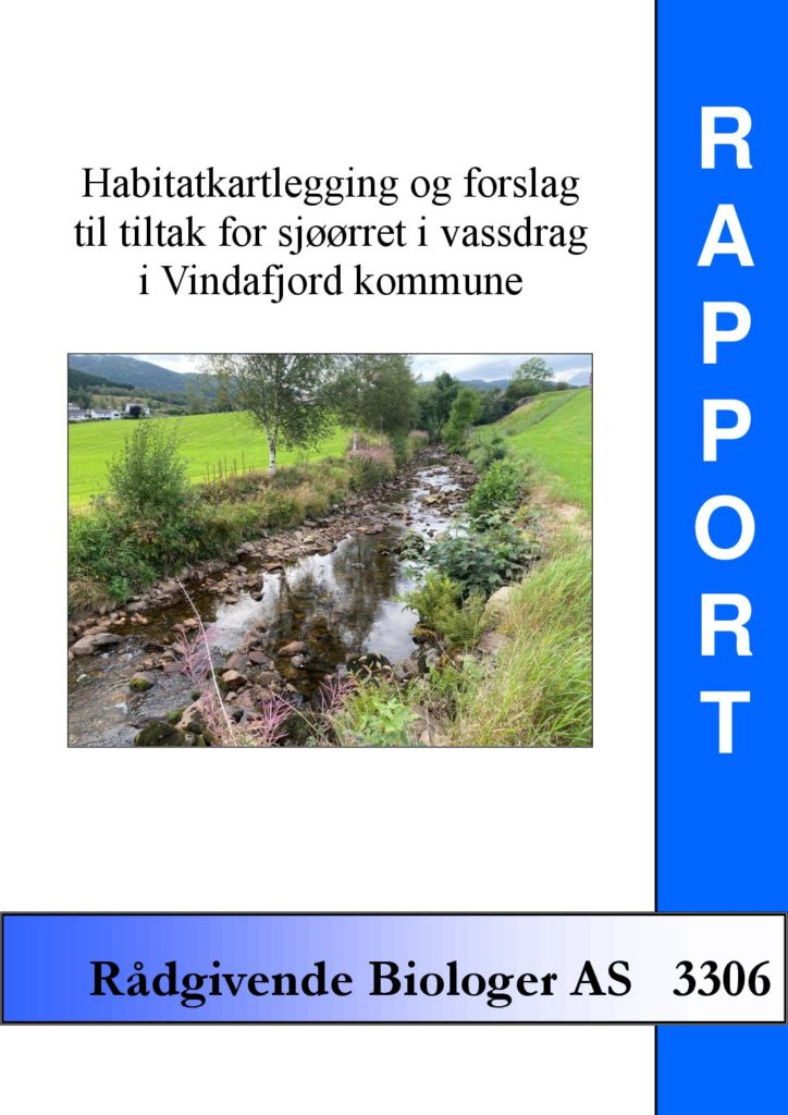 Rapport cover - rapport 3306
