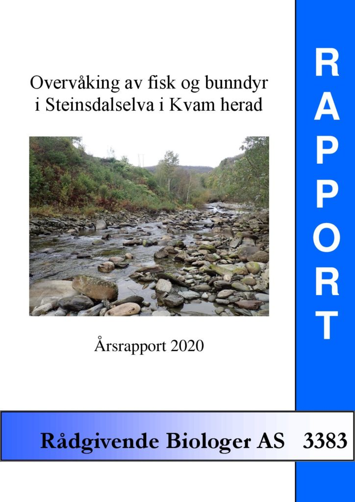 Rapport cover - rapport 3383