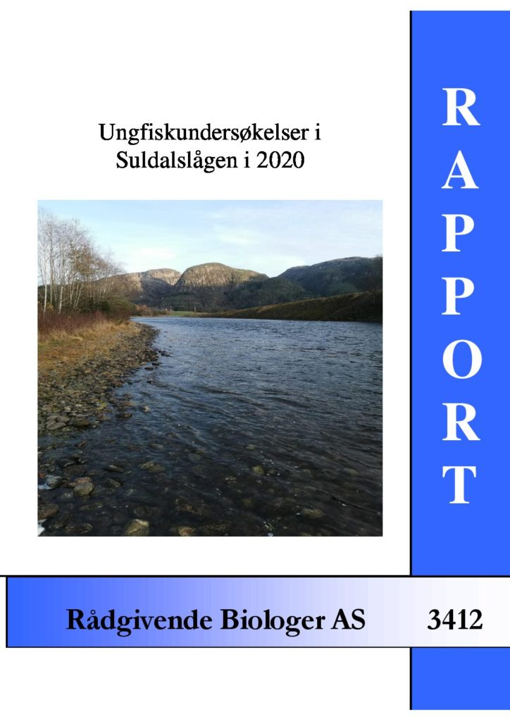 Rapport cover - rapport 3412