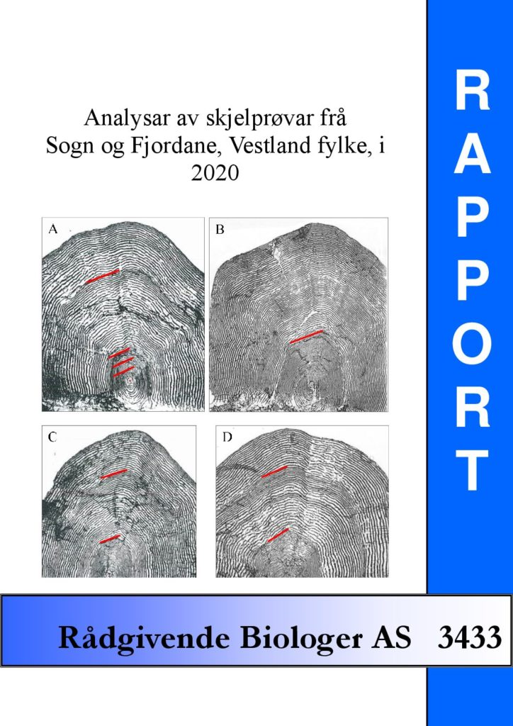 Rapport cover - rapport 3433